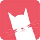猫咪1.3.0最新下载